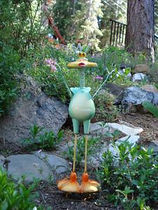 Nerdy Birdy! 06-26-2010