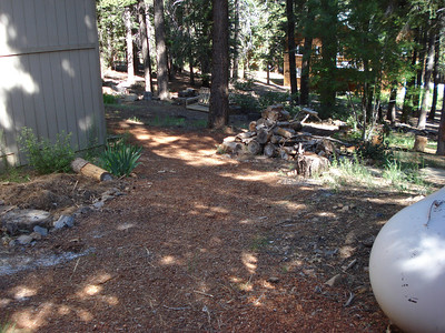 Backyard Garden with new Pine Bark Mulch