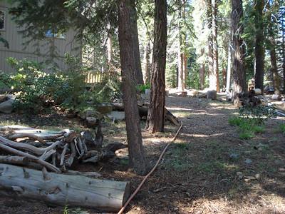 Backyard Garden Project