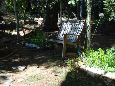 Yard and Bench 06-19-2014