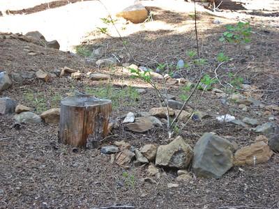 Backyard Garden Project 06-06-2015