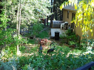 Garden 06-19-2018