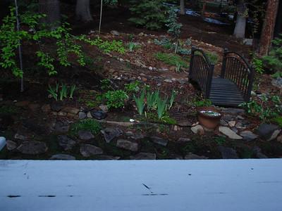 Garden Snow 06/05/2012