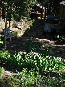 Garden 07-02-2012 Side Garden