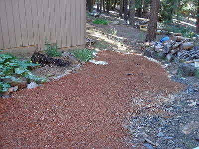Garden 08-16-2012 Backyard Garden Project