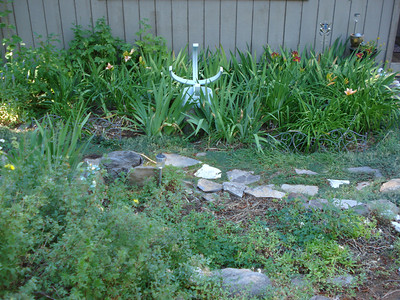 Garden 08-05-2012 Front Garden
