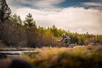 Little Truckee Fly Fisherman