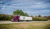 Truck_111211_LR-201