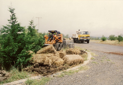 Digging up our garden in 1993