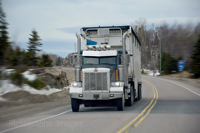 Driving Truck On The Trans Canada Highway