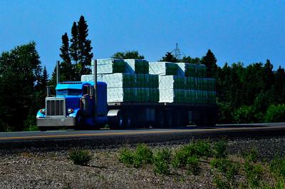 Blue Truck Trucking
