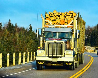 Transformers, Trucking Wood, 2017