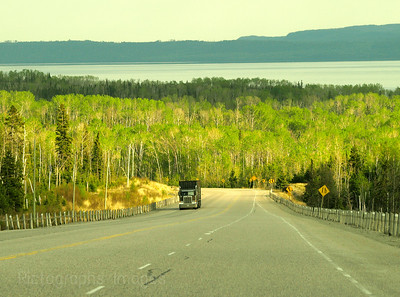 Early summer boreal highway
