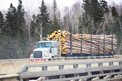 Trucking Logs, To The Mill