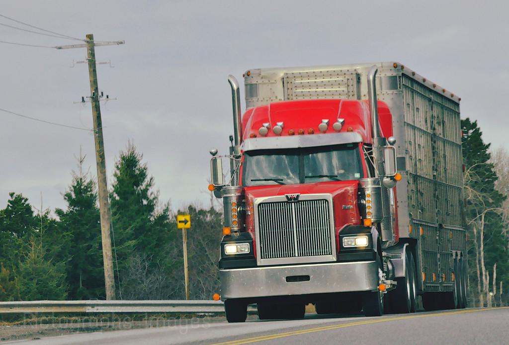 Red Truck Trucking
