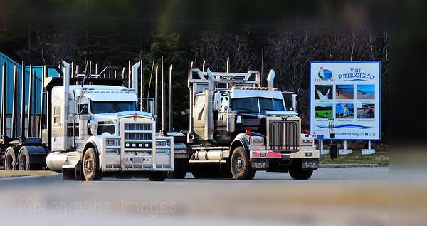 Trucking Trucks, 2019