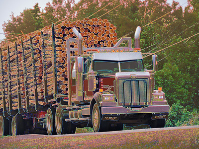 Trucking Logs To Market, 2018