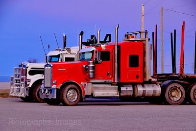 Resting Pair of Trucks