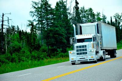 Trucking The Merchandise, Summer 2017