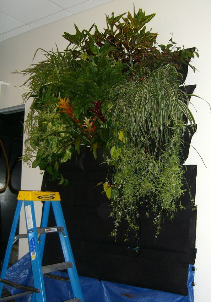 After filling the pockets with soil, it is time to add the plants of your choosing. This installation is only partially full.