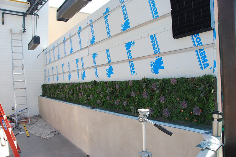 """The first of four rows of panels in the succulent """"living wall"""" are completed. Waterproofing has already been installed behind them."""