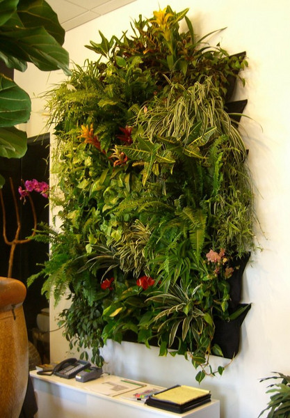 "The completed pocket-based ""hanging garden"" looks great behind an office desk!"