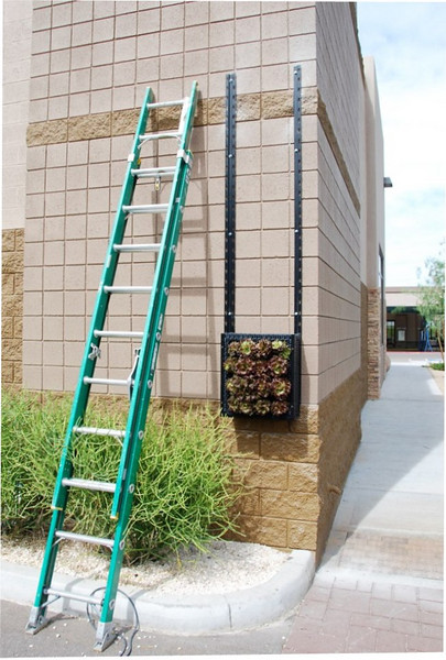 Wall frame for garden panels: To grow edible plants successfully, be sure to choose a wall that gets at least six hours of sun daily. Then, after much measuring and drilling, the frame can go up, and panels can finally be mounted.
