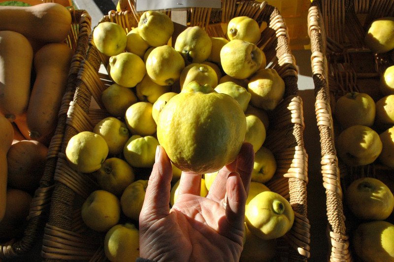 Quince, up close.