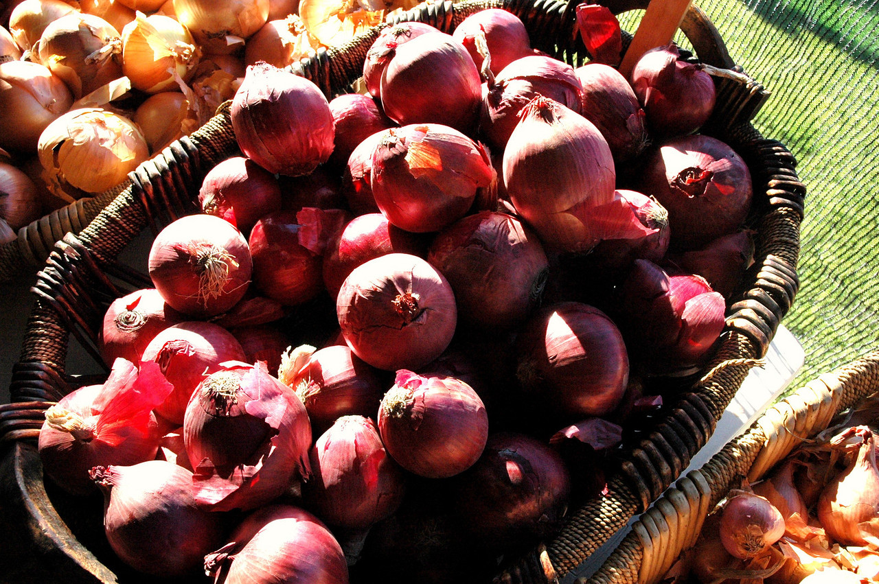 Red onions, local and organic.