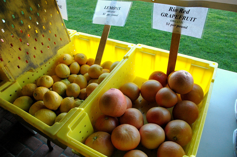 Organic citrus fruits - just coming into season!