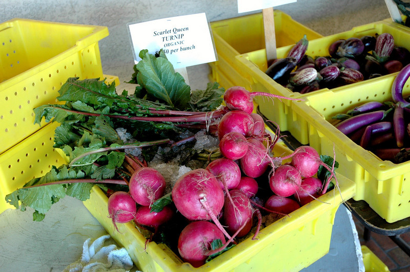 Organic, local produce in Phoenix! Here are some fantastic turnips, wonderful to eat raw or cooked.