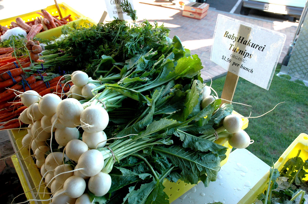 Organic, local turnips!