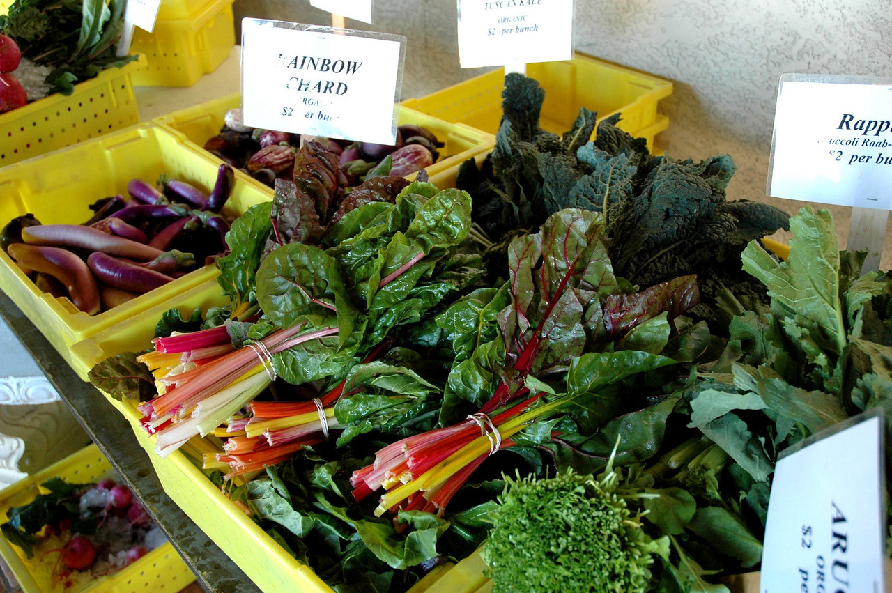 Organic, local produce in Phoenix: beautiful chard and assorted greens.