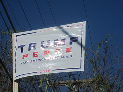 Trump Election Sign Flying High!
