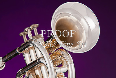 Silver Cornet In Color 2501.07