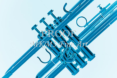 Blue on Blue Trumpet Silhouette 2508.70