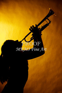 Trumpet Silhouette and Girl on Yellow 2508.74