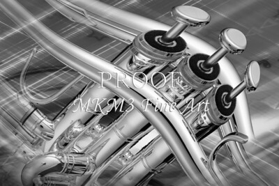 Trumpet and Lines In Black and White 2502.33