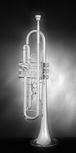 Trumpet In the Mist Black and White 2502.40
