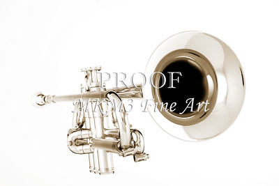 Trumpet Bell Front in Sepia Canvas Art 2502.49