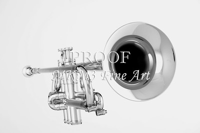Music Art Trumpet In BW 2502.35