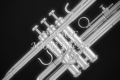Trumpet on Black in Black and White 2502.54