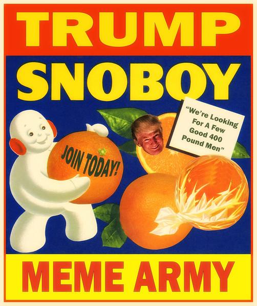 Trump #Snoboy Meme Army Recruiting Poster