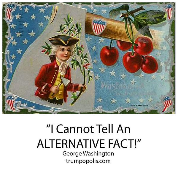 """I Cannot Tell An Alternative Fact"" George Washington"