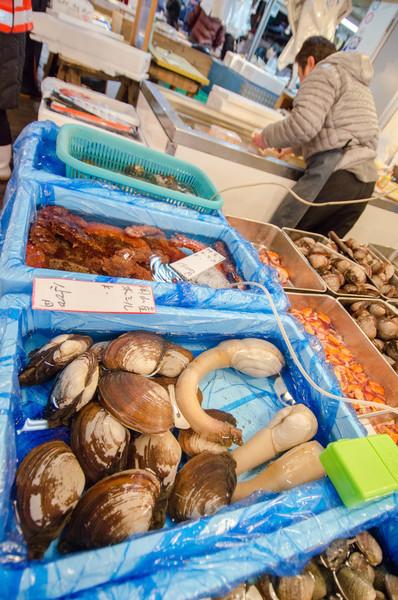 Intermediate wholesaler market - Tsukiji Fish Market, Tokyo