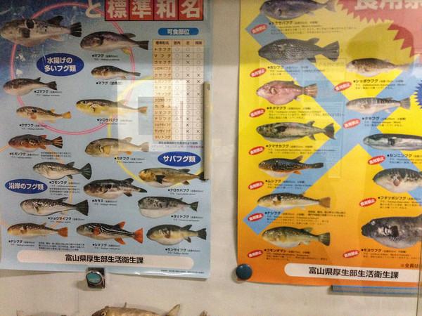 Guide to poisonous fish at Tsukiji Fish Market, Tokyo