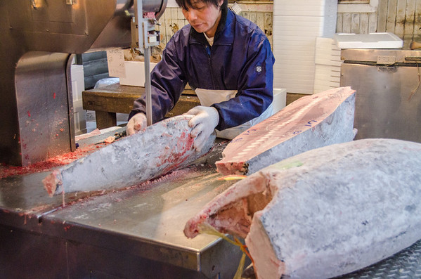 Frozen tuna at the Intermediate wholesaler market - Tsukiji Fish Market, Tokyo