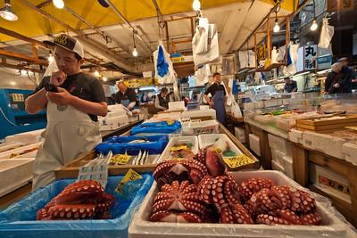 Tsukiji Wholesale Market