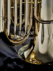 Tuba Mujsic Insdtrument In Color 133.2060