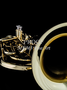 Tuba Mujsic Insdtrument In Color 134.2060